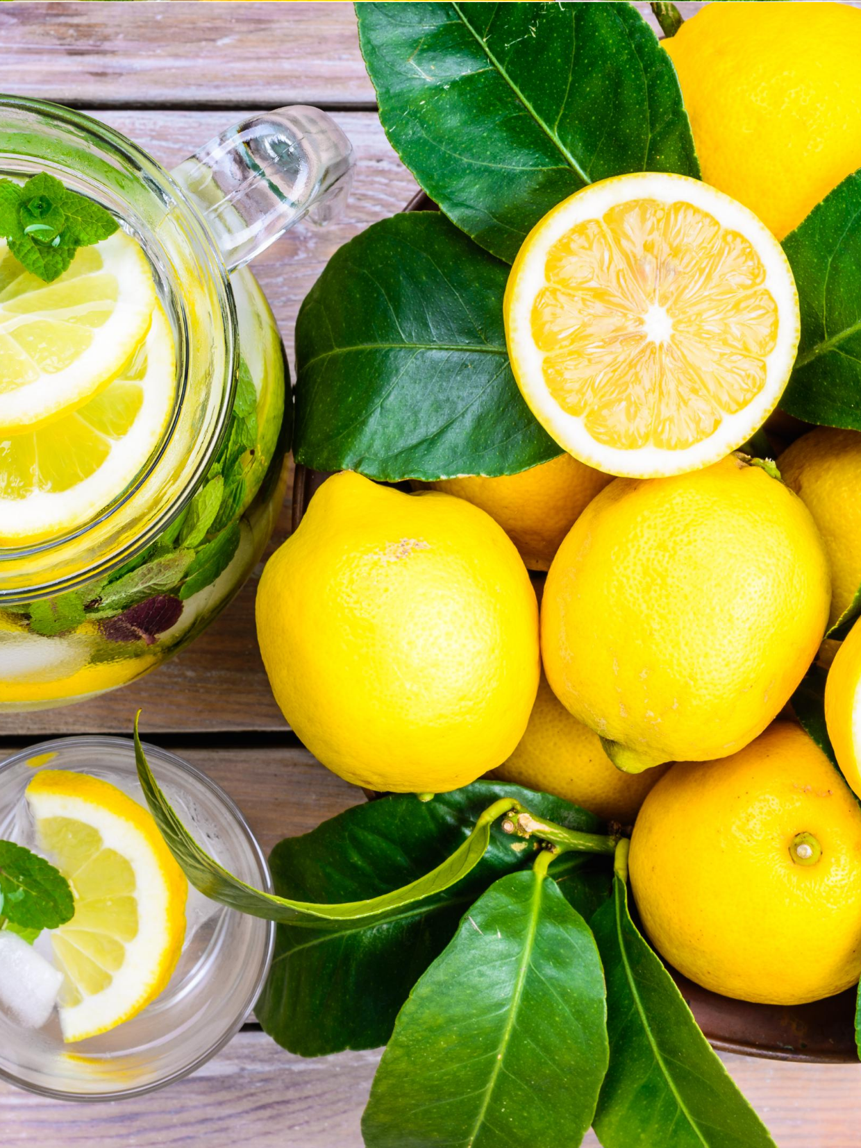 Lemons and Leaves Describing Nutrition Counseling