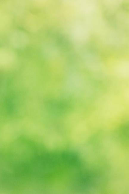 Green Background Header