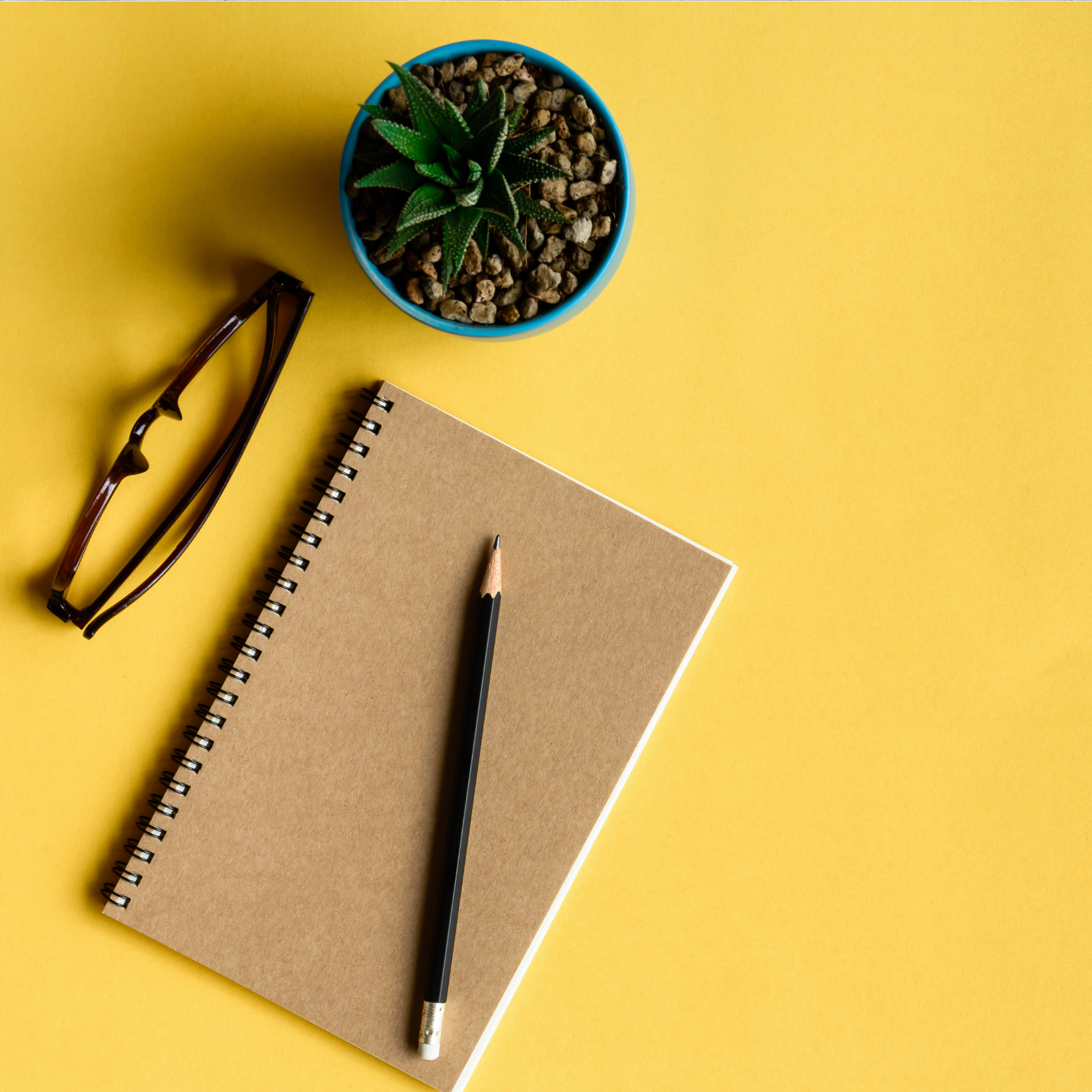 Yellow background with notebook, glasses & plant depicting Supervision
