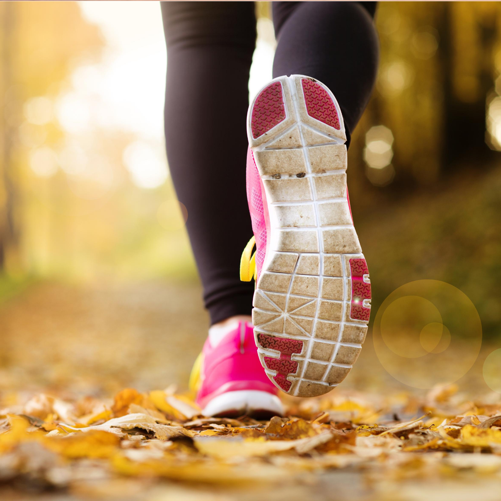Runner pink sneakers on path with leaves depicting Sports Nutrition
